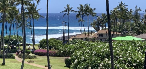 The view from Kahala
