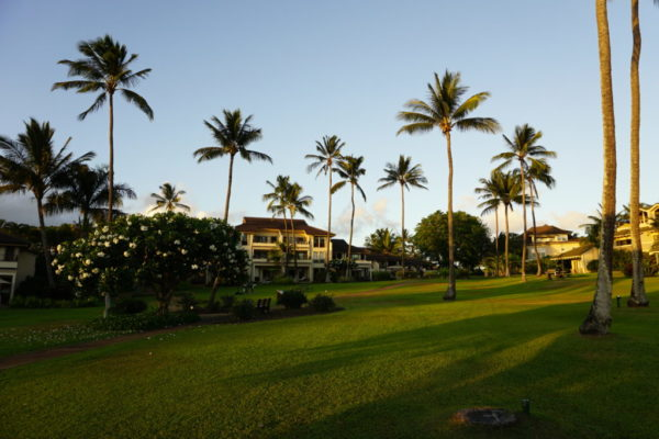 Kahala buildings